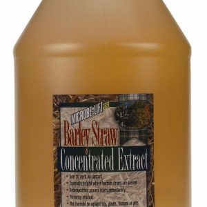 1 Gallon Barley Straw Concentrated Extract
