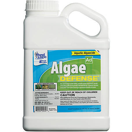 Pond Logic Algae Defense 1 Gallon